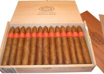 xì gà Partagas serie P No.2